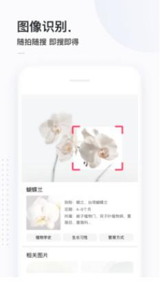 简单搜索app