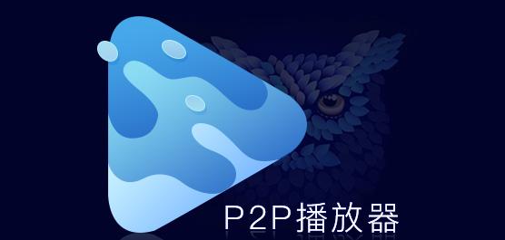 p2p播放器大全