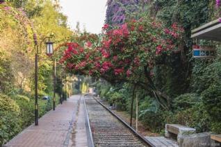 厦门铁路文化公园风景壁纸
